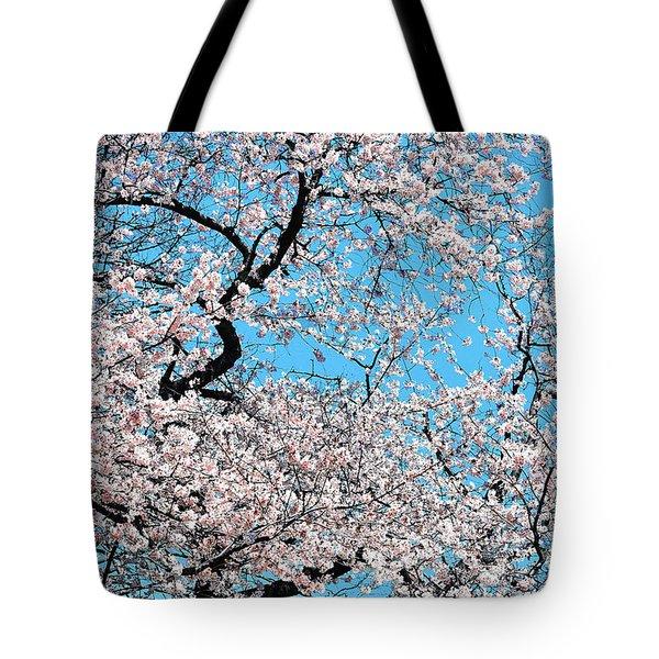 Yoshino Ornamental Cherry Tree Tote Bag