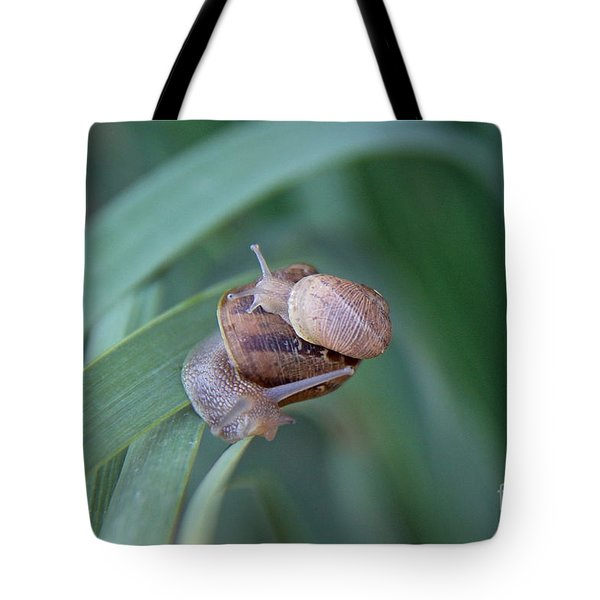 You And Me Kid Tote Bag by Suzanne Oesterling