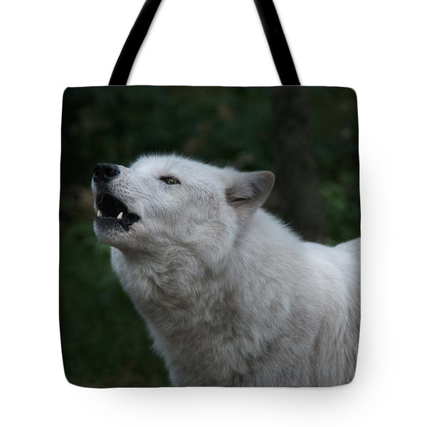 You Are My Moonshine Tote Bag