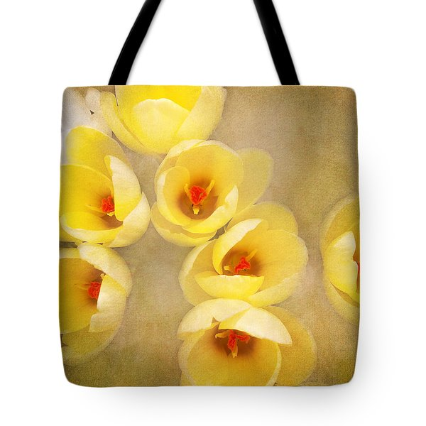 You Light Up My Life Tote Bag by Kathi Mirto