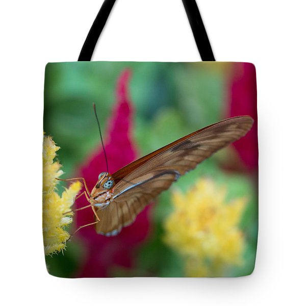 Tote Bag featuring the photograph You Lookin At Me? by Cathy Donohoue