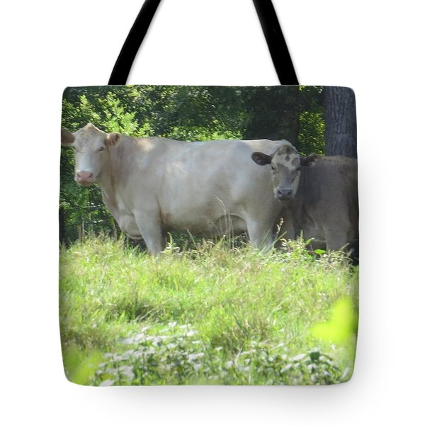 Tote Bag featuring the photograph You Looking At Us by Aaron Martens