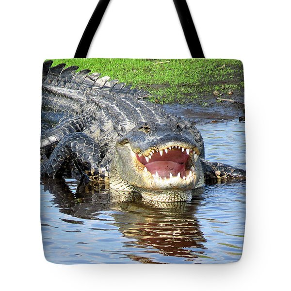 You May Think I'm Smiling Tote Bag