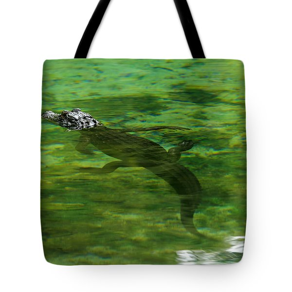 Young Alligator Tote Bag