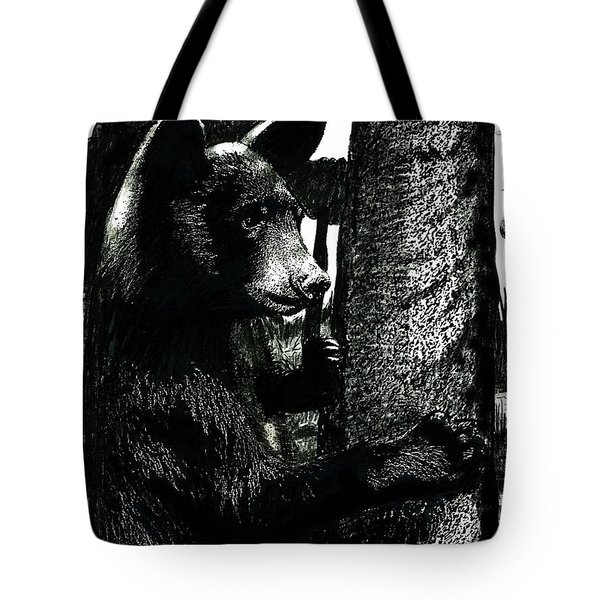 Young Black Bear In Tree  Tote Bag