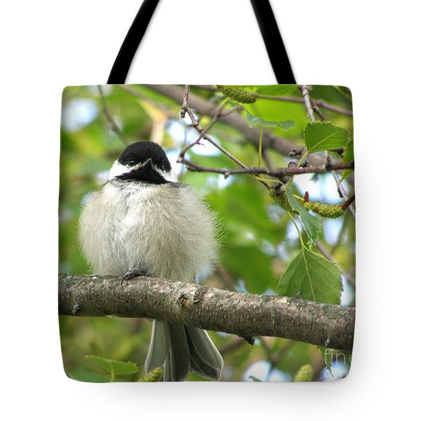 Tote Bag featuring the photograph Young Black-capped Chickadee by Angie Rea