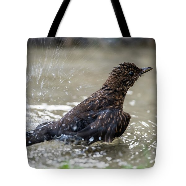 Tote Bag featuring the photograph Young Blackbird's Bath by Torbjorn Swenelius
