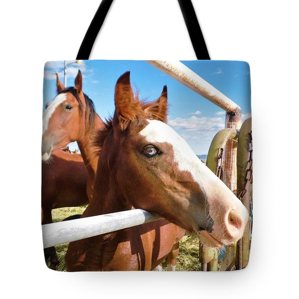 Tote Bag featuring the photograph Young Blue Eyed Horse by Deborah Moen