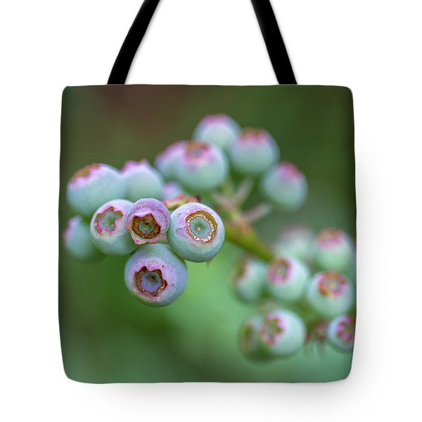 Young Blueberries Tote Bag