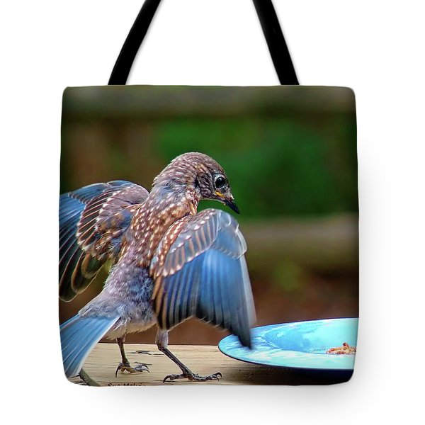 Young Bluebird's Delight Tote Bag