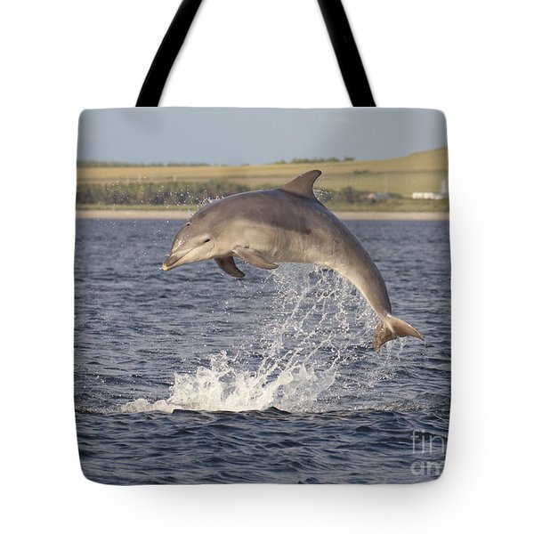 Young Bottlenose Dolphin - Scotland #13 Tote Bag