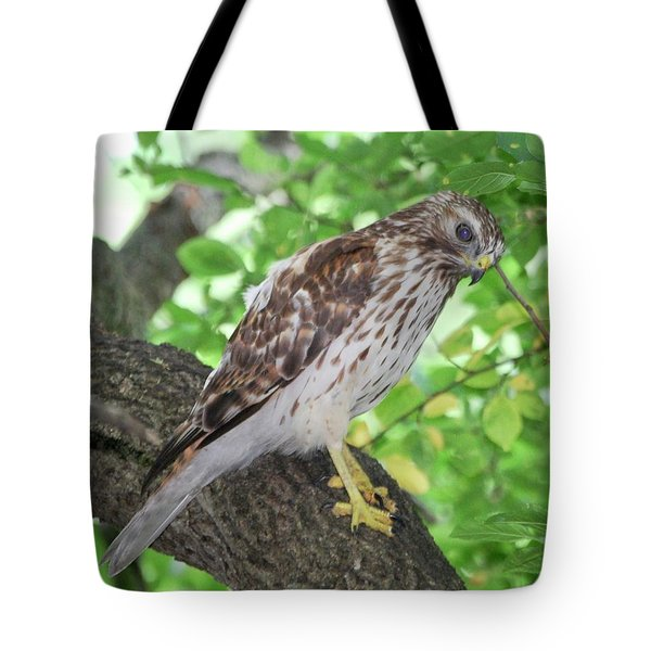 Young Red Shouldered Tote Bag