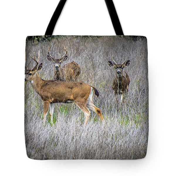Young Bucks Tote Bag