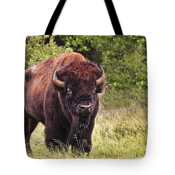Young Buffalo Tote Bag by Tamyra Ayles