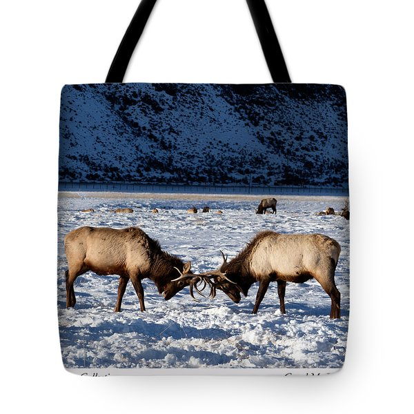 Young Bull Elk In Jackson  Hole In Wyoming Tote Bag
