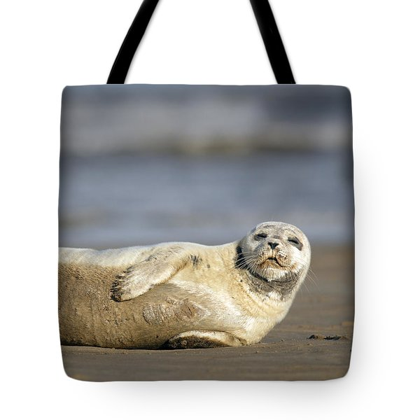 Young Common Seal Sleeping On The Beach Tote Bag