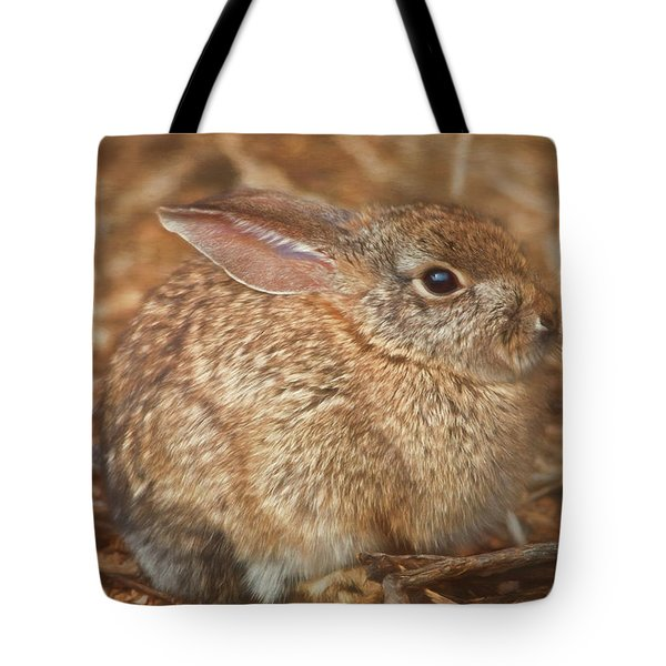 Tote Bag featuring the photograph Young Cottontail In The Morning by Teresa Wilson