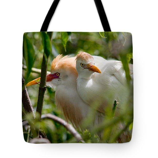 Young Couple Tote Bag by Christopher Holmes