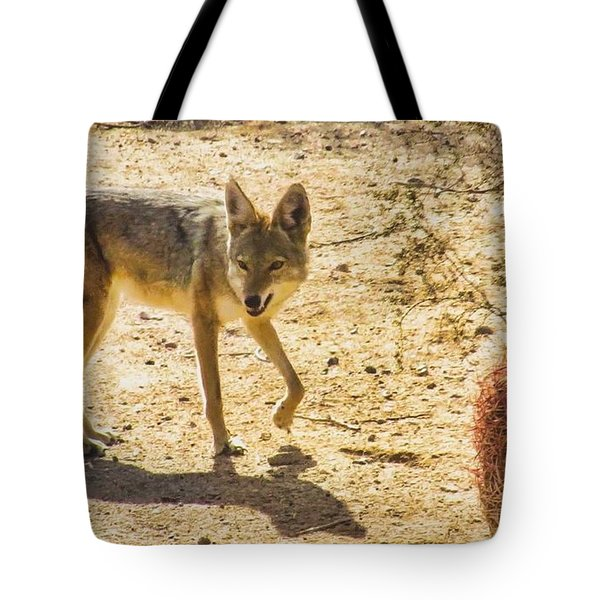 Young Coyote And Cactus Tote Bag