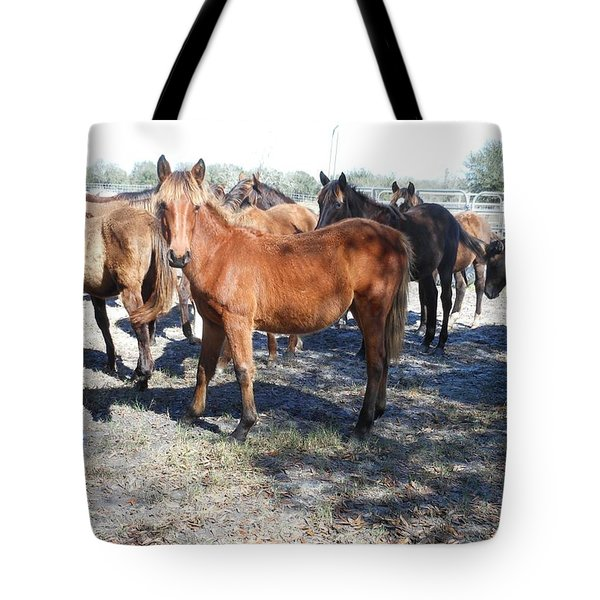 Young Cracker Horses Tote Bag by Kay Gilley