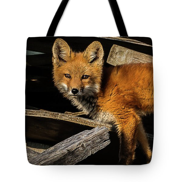 Young Fox In The Wood Tote Bag