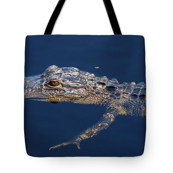 Tote Bag featuring the photograph Young Gator 1 by Arthur Dodd