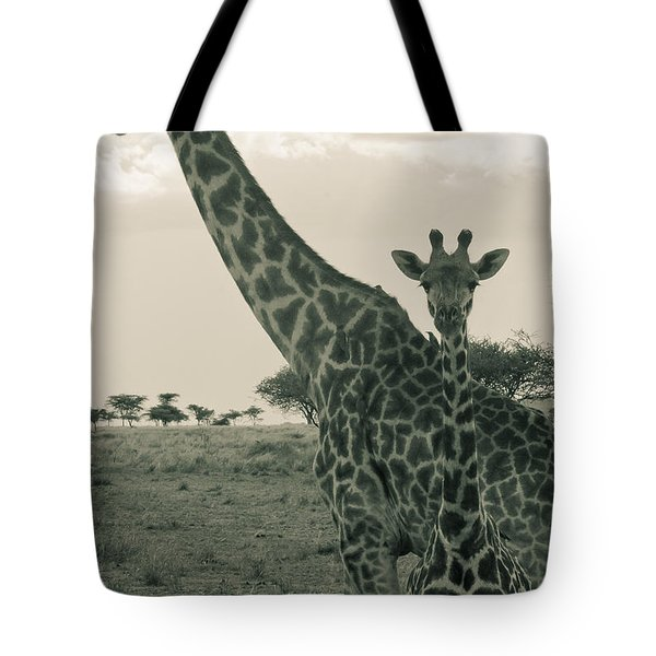 Young Giraffe With Mom In Sepia Tote Bag by Darcy Michaelchuk
