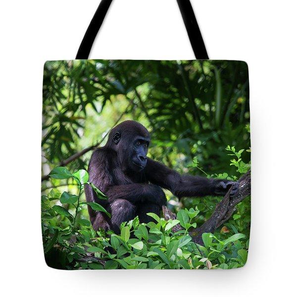 Young Gorilla Tote Bag