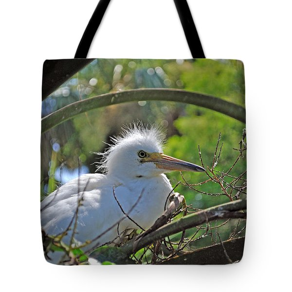 Young Great Egret Tote Bag by Kenneth Albin
