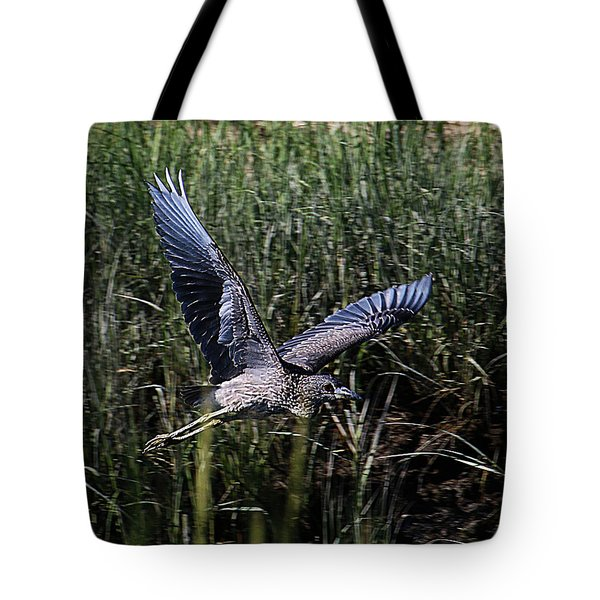 Tote Bag featuring the photograph Young Heron Takes Flight by William Selander