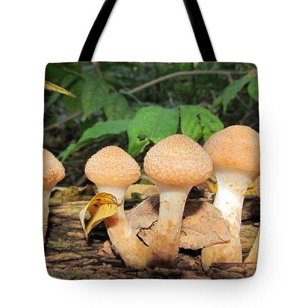 Young Honey Mushrooms Tote Bag