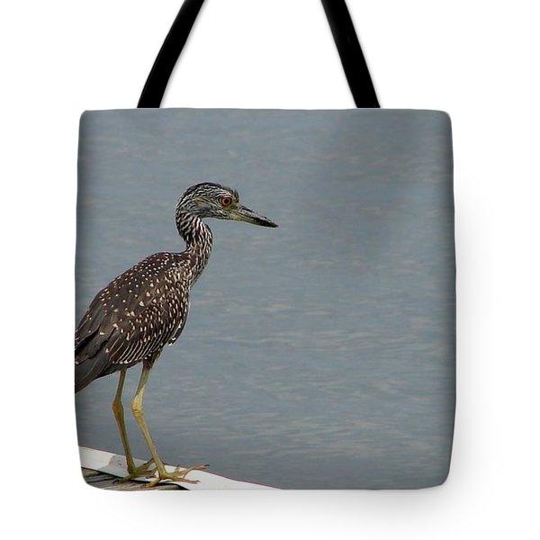 Young Night Heron Tote Bag