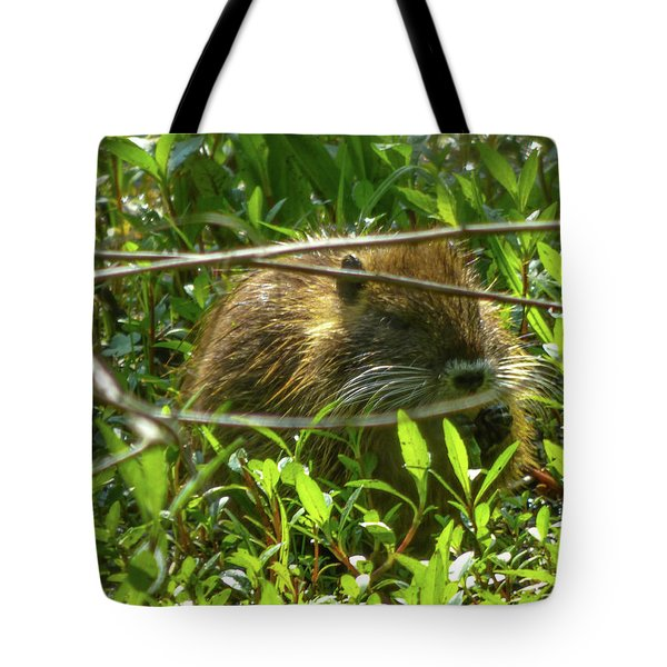 Young Nutria In Love Tote Bag by Kimo Fernandez