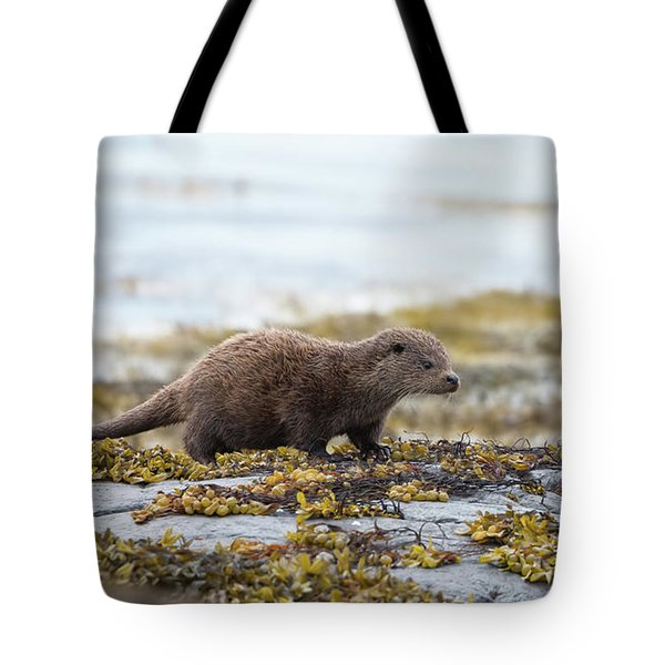 Young Otter Tote Bag