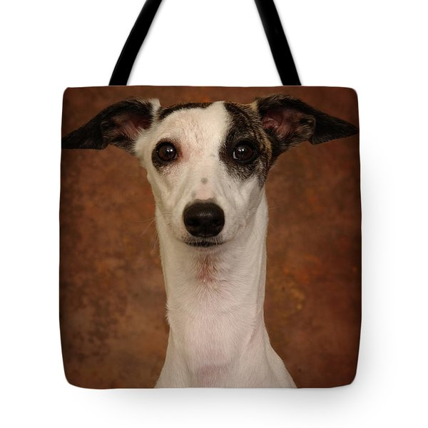Young Whippet Tote Bag by Greg Mimbs