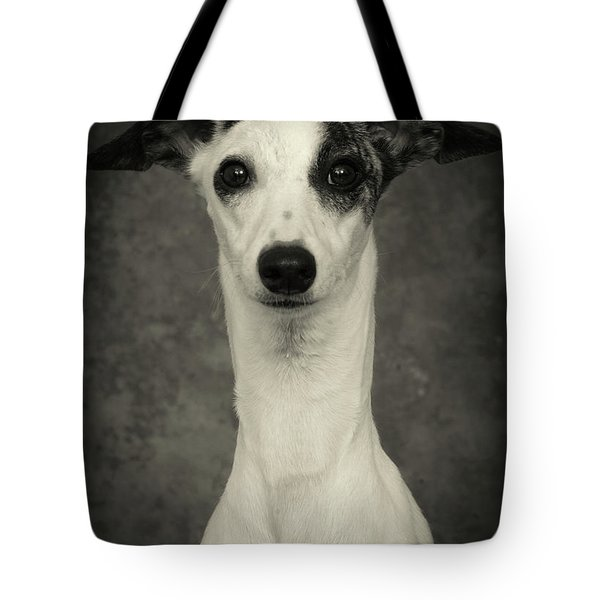 Young Whippet In Black And White Tote Bag by Greg and Chrystal Mimbs