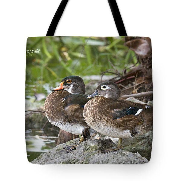 Young Wood Duck Pair Tote Bag