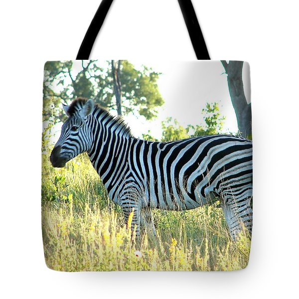 Young Zebra Tote Bag