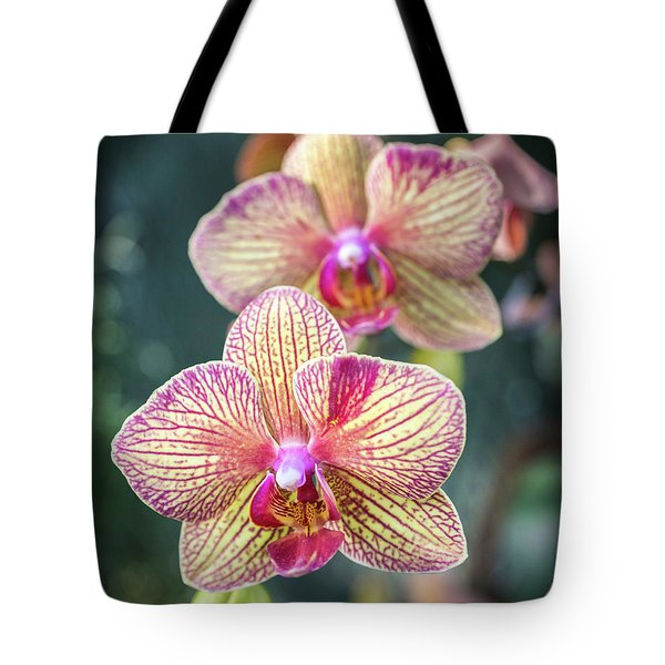 Tote Bag featuring the photograph You're So Vain by Bill Pevlor