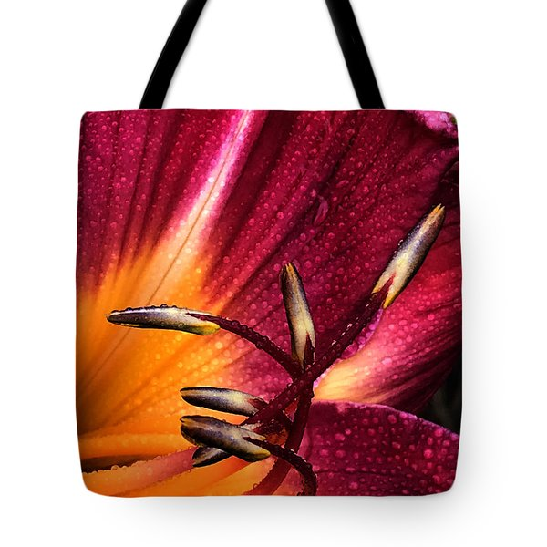 Youthful Joyride Tote Bag