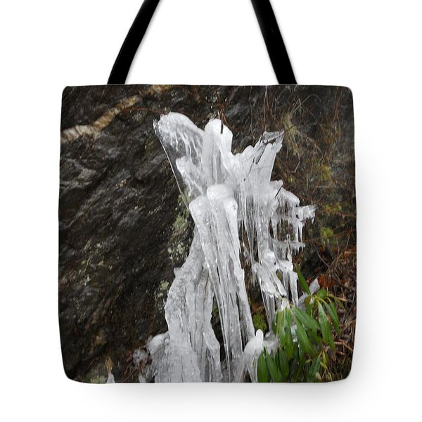 Tote Bag featuring the photograph You've Got A Friend by Diannah Lynch