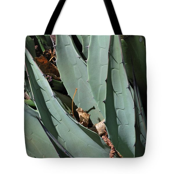 Tote Bag featuring the photograph Yucca Leaves by Ron Cline