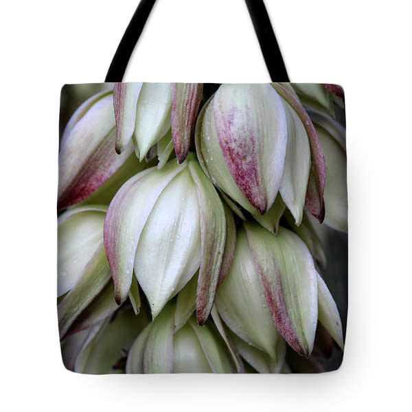 Tote Bag featuring the photograph Yucca by Silke Brubaker