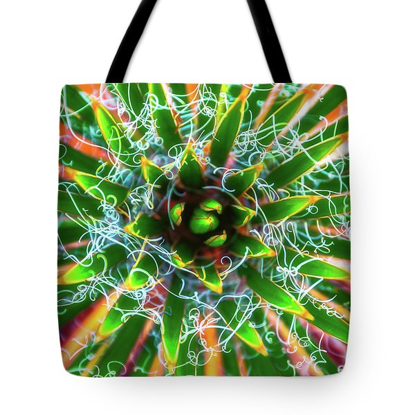 Yucca Sunrise Tote Bag by Darren White