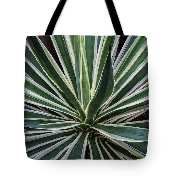 Tote Bag featuring the photograph Yucca Whirl by Lon Dittrick