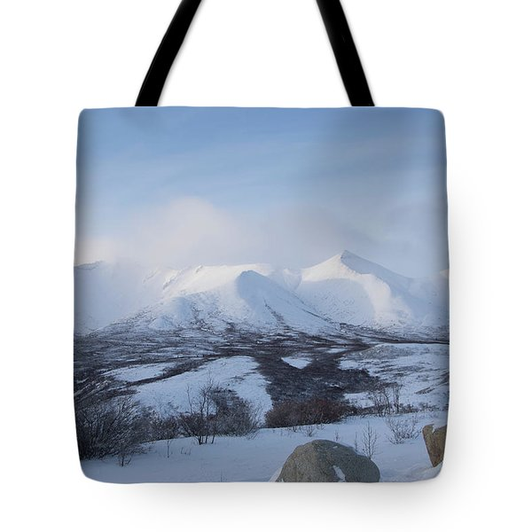 Tote Bag featuring the photograph Yukon Snow Scene Mystic by Phyllis Spoor
