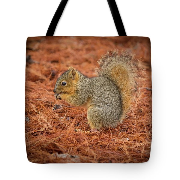 Yum Yum Nuts Wildlife Photography By Kaylyn Franks     Tote Bag