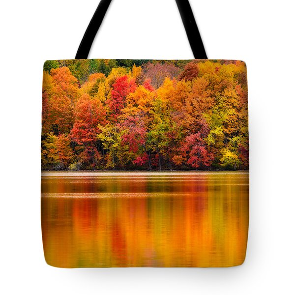 Yummy Autumn Colors Tote Bag