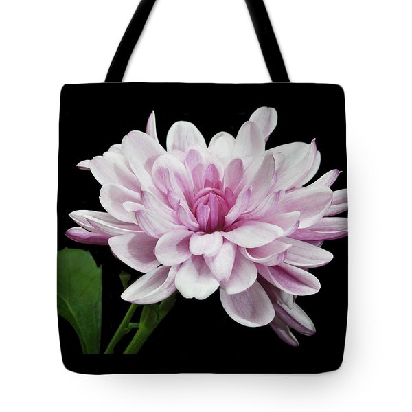 Tote Bag featuring the photograph Yummy Mummy by Terence Davis