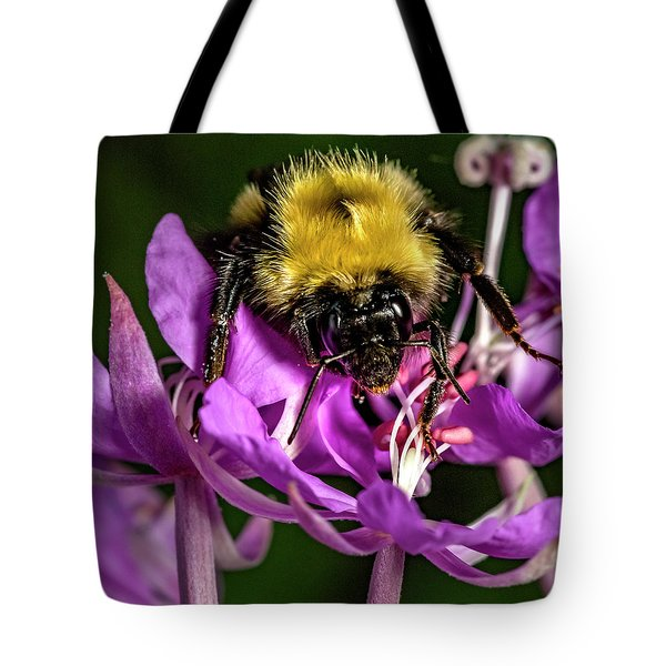 Tote Bag featuring the photograph Yummy Pollen by Darcy Michaelchuk